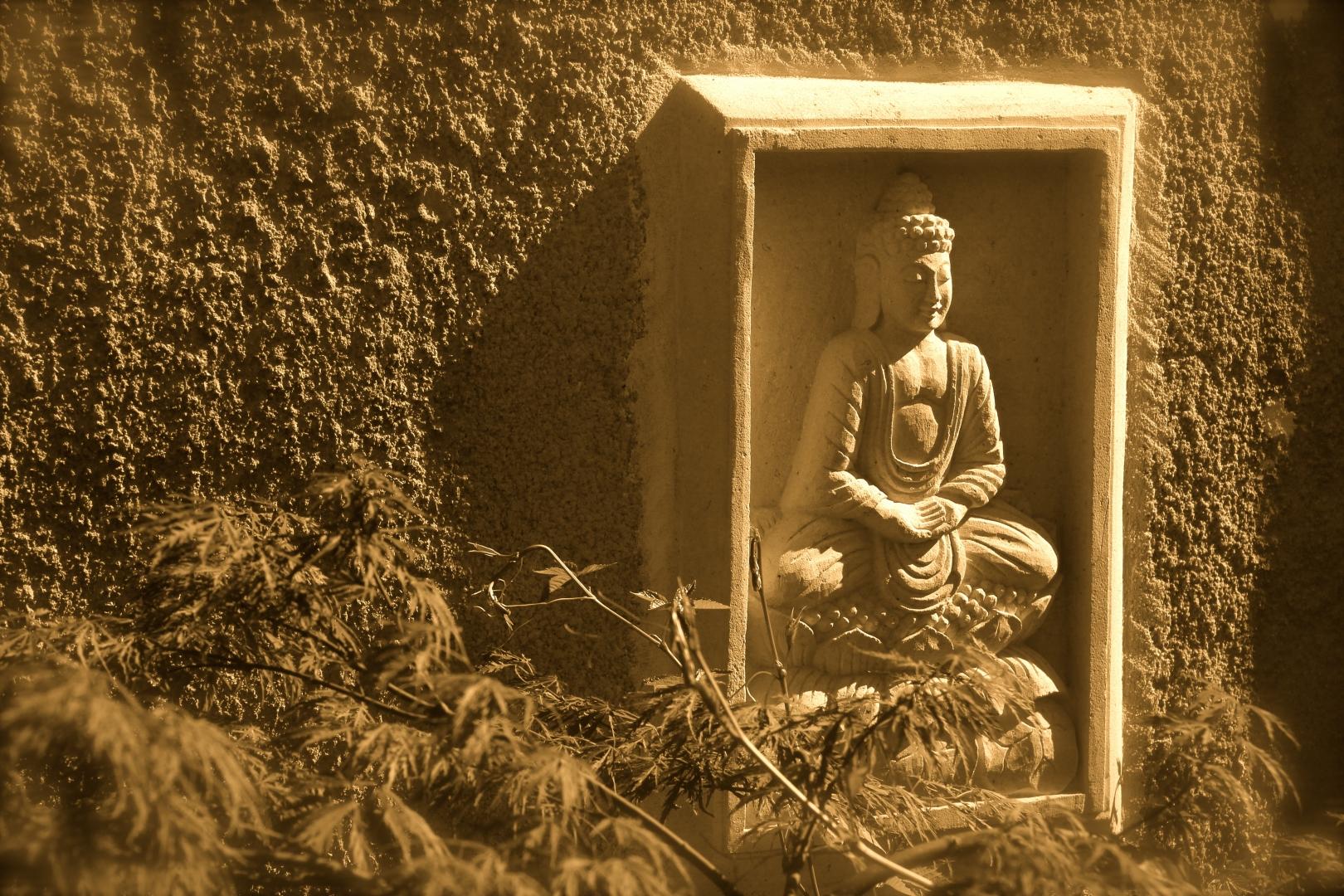 La Jardin Zen Côté Luberon_The Zen Garden_IMG_8341