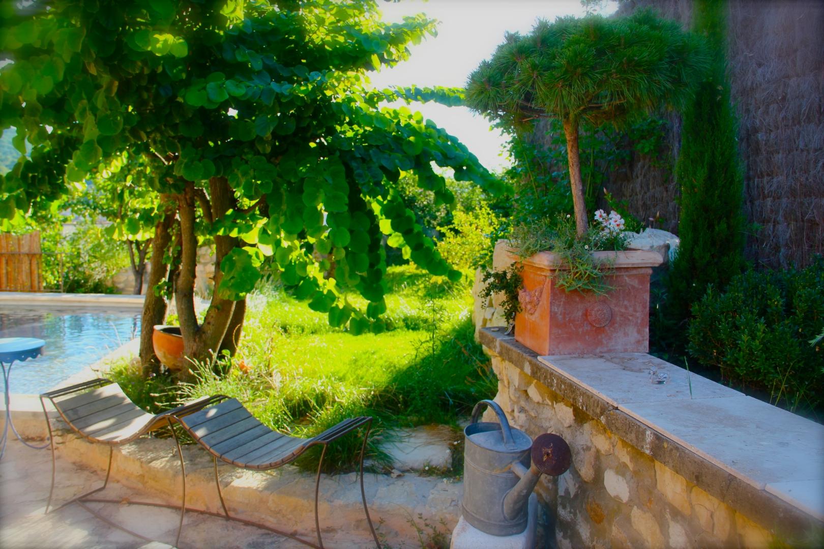 La Jardin Zen Côté Luberon_The Zen Garden_IMG_8353