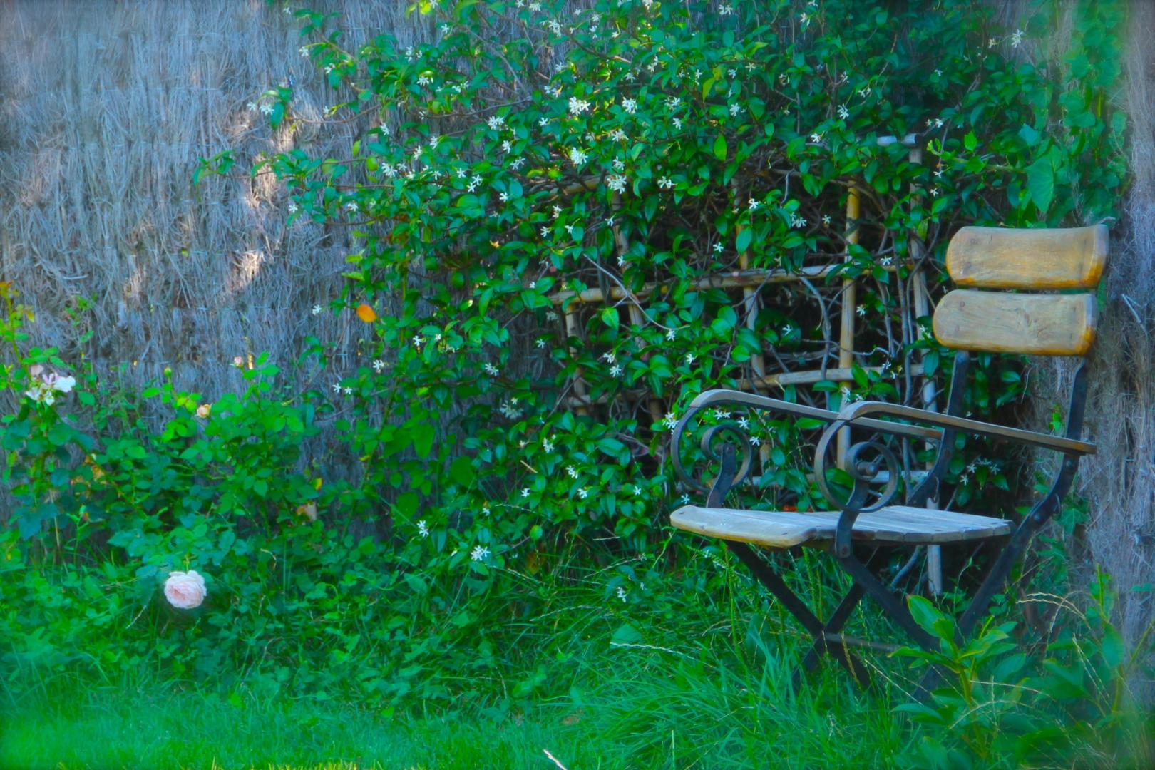 Le Jardin Botanique Côté Luberon_The Botanical Garden_IMG_8284