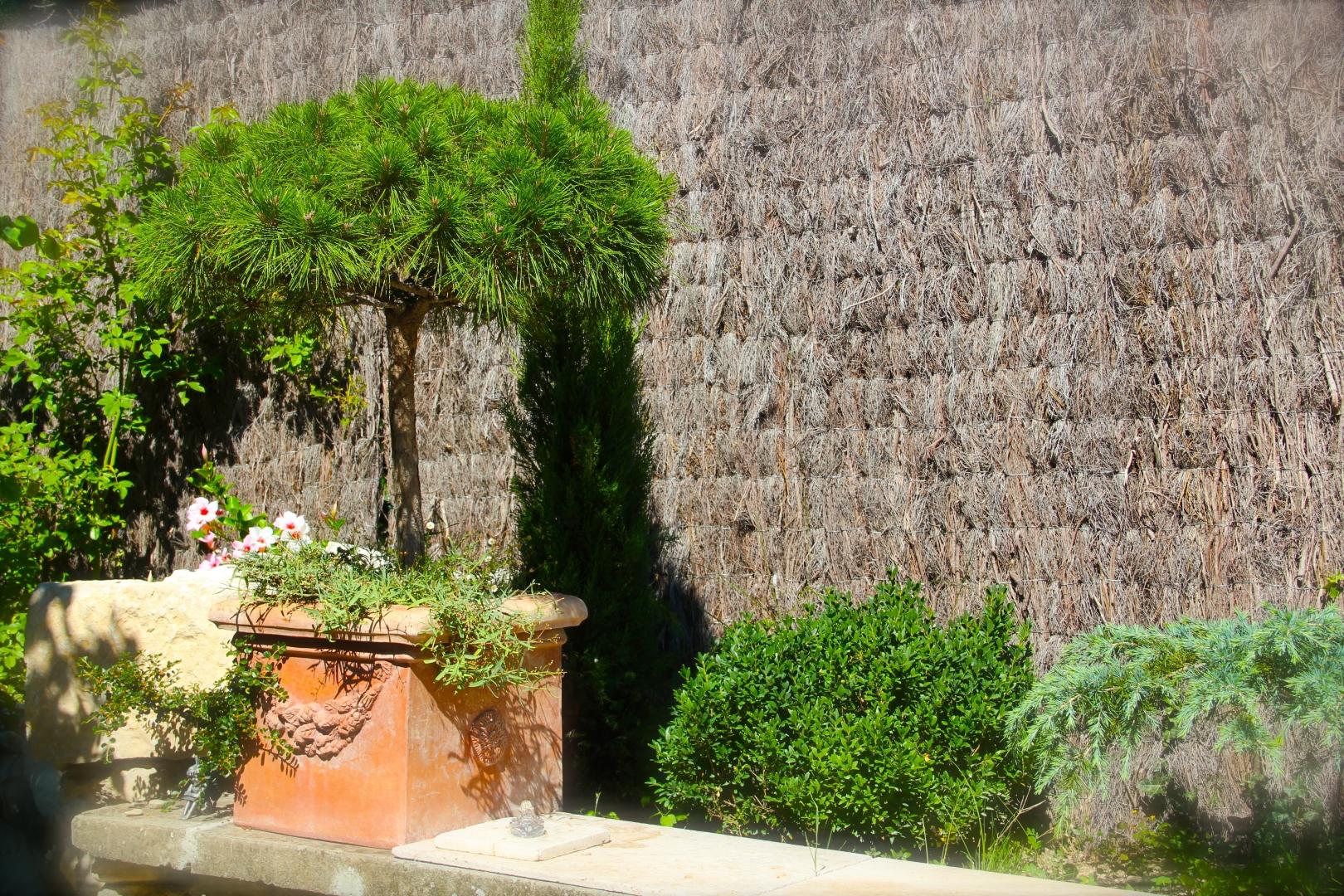Le Jardin Botanique Côté Luberon_The Botanical Garden_IMG_8295