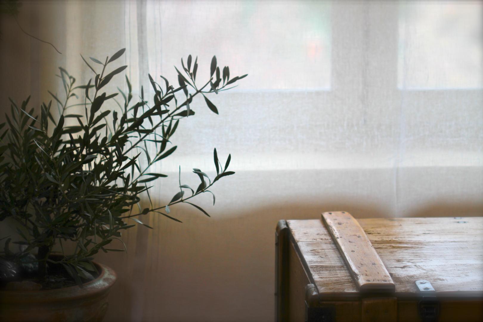 Le Salon Côté Luberon_The Living Room_IMG_5299